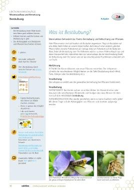 Page 36 - Lehrmittel Erlebniswerkstatt Wildbienen entdecken von ...